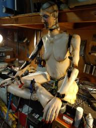 The Sexbots Are Revolting WIP (3)