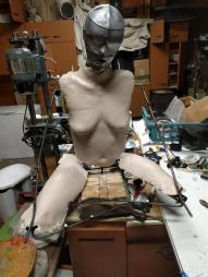 The Sexbots Are Revolting WIP (9)